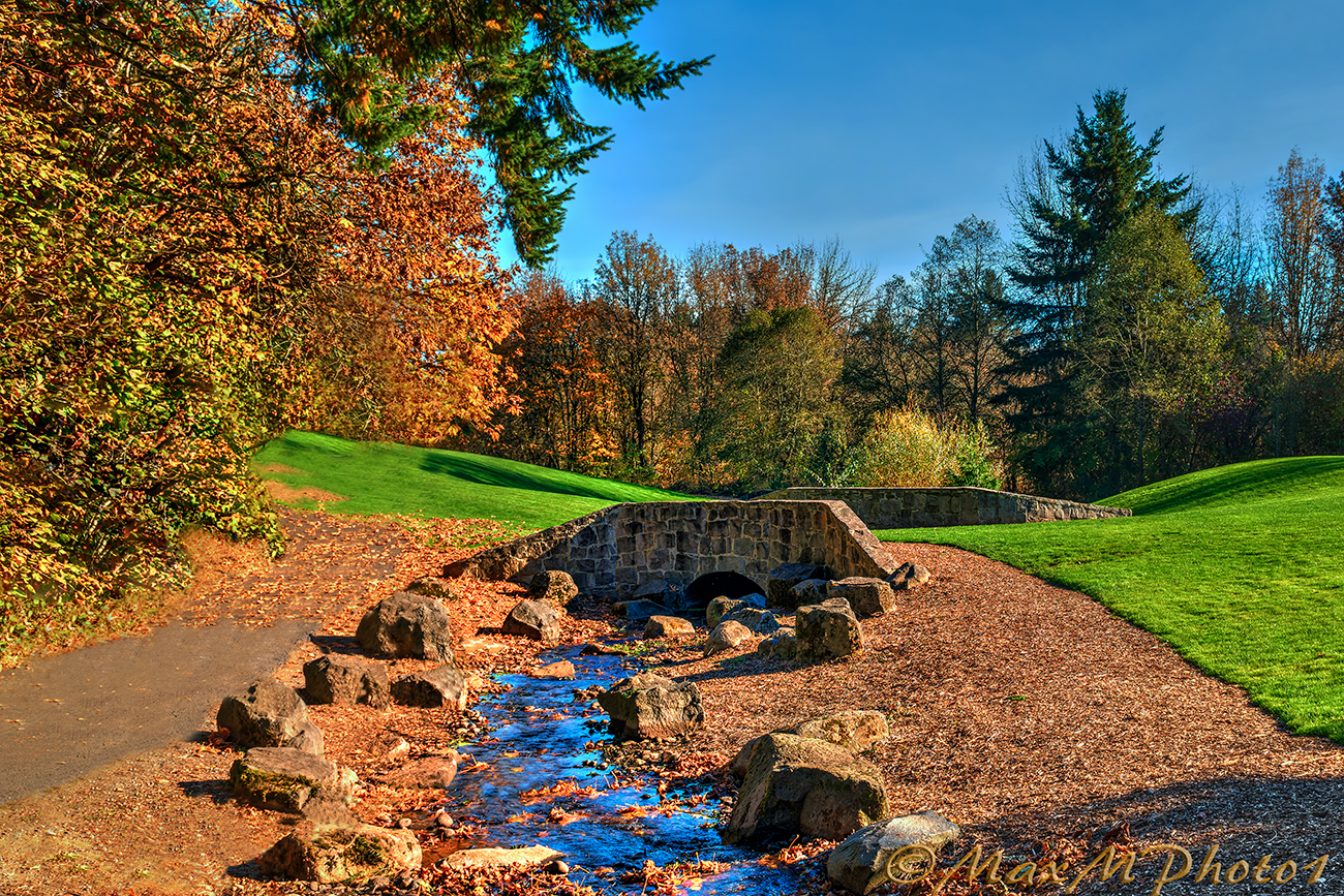 Fall colors creek bridge