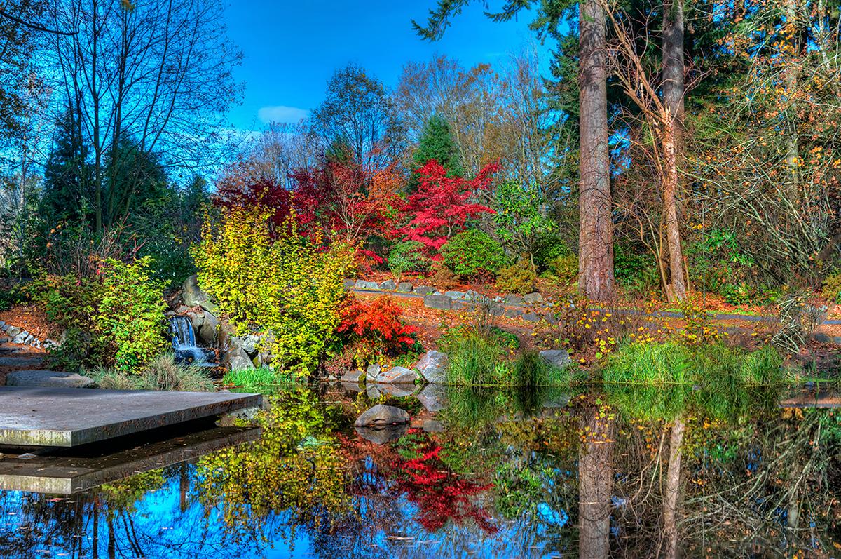 Color reflection pond